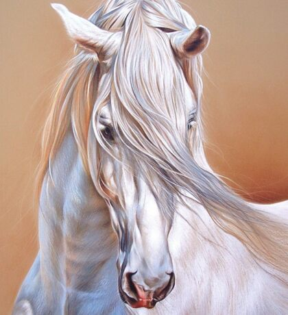 """Andalusian stallion"" - close-up Sticker"
