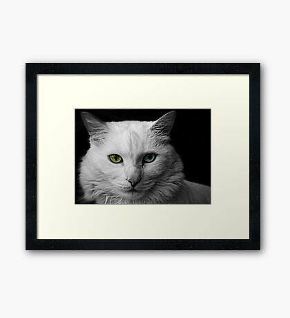 The Lady is Demure Framed Print