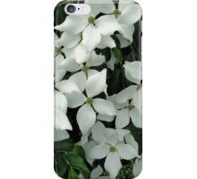 Dogwood morning iPhone Case/Skin
