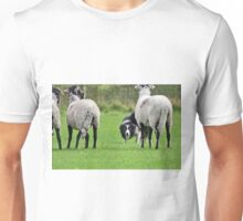 Working Sheepdog Unisex T-Shirt