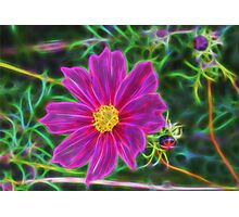 Fractal Flower 2 Photographic Print