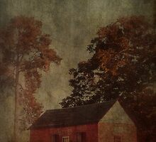 small house by A.R. Williams