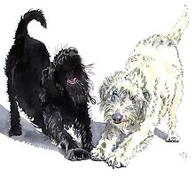 Labradoodle Doodle by Yvonne Carter