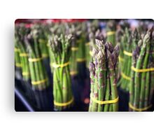 Asparagus Bunches Canvas Print