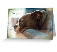 Sorry... Greeting Card