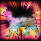 Cosmic Cat!  by RobynLee