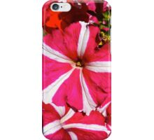 Blossom of Colour iPhone Case/Skin