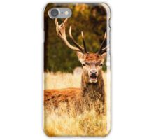 Richmond stags iPhone Case/Skin