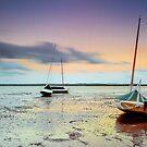 Stuck in the Mud - Redland Bay Qld Australia by Beth  Wode