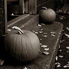 Fall Pumpkin Pair by John Ayo