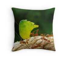Soldiering On Throw Pillow
