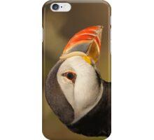 Puffin Profile iPhone Case/Skin