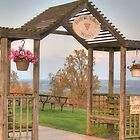 Hunters Valley Winery by Shelley Neff