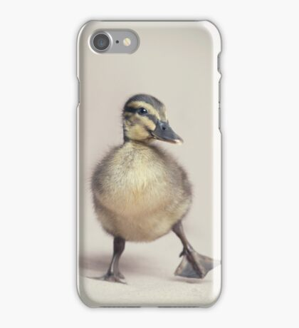 Springtime Strut iPhone Case/Skin