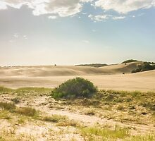 Dunes of Cariló Beach in Argentina by DFLC Prints