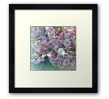 Blossoming Tree - Early Spring  Framed Print