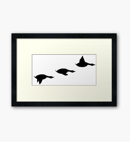 Duck Flight Framed Print