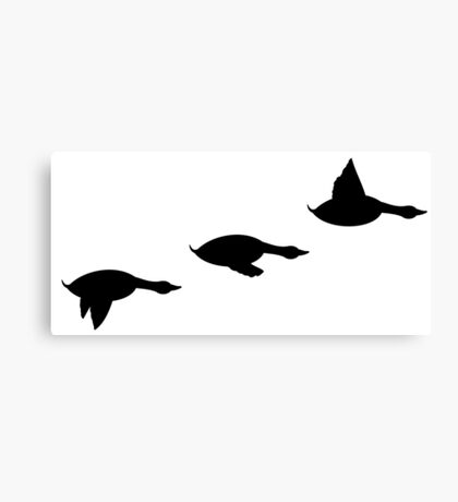 Duck Flight Canvas Print