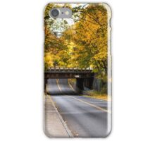 Leaf Tunnel iPhone Case/Skin
