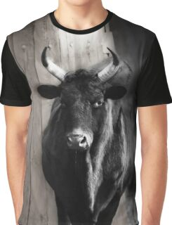 OX Graphic T-Shirt