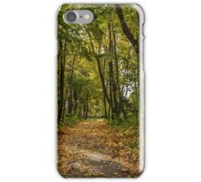 The road between yellow trees iPhone Case/Skin