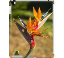 Birds of Paradise/Heliconia - Nature Photography iPad Case/Skin