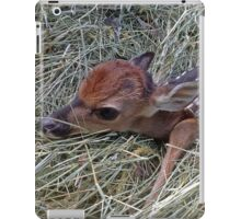 Welcome To The World Little Fawn iPad Case/Skin