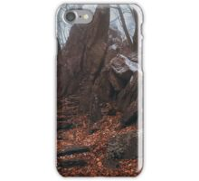 Kingdom of the Rocks. In Mysterious Woods iPhone Case/Skin