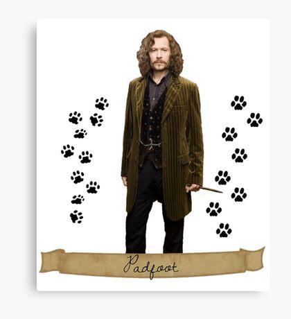 Sirius black - padfoot  Canvas Print