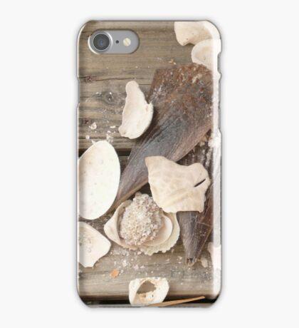 Found Shells -Florida iPhone Case/Skin