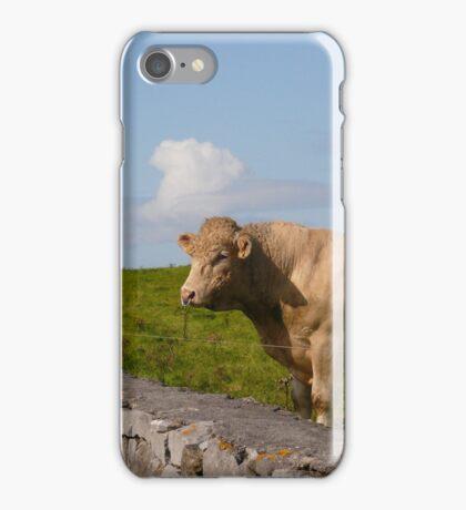 Bull - Ireland iPhone Case/Skin