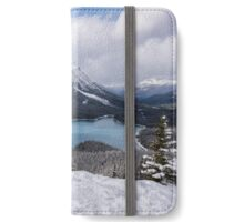 Peyto Picnic iPhone Wallet/Case/Skin