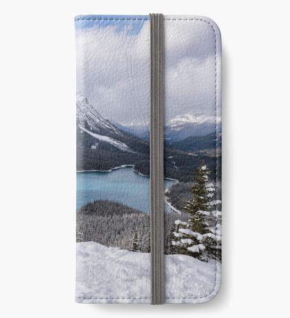 Peyto Picnic iPhone Wallet/Case/Skin
