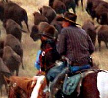 Driving The Herd Sticker