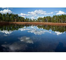 Autumn Reflections at Green Swamp Photographic Print