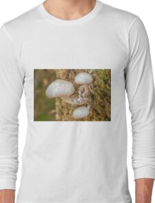 Small Porcelain Fungus toadstools Long Sleeve T-Shirt