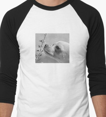 Chihuahua and the Important Message--Take Time to Smell the Flowers Men's Baseball ¾ T-Shirt