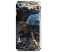Kangaroos having little nap under a big tree iPhone Case/Skin