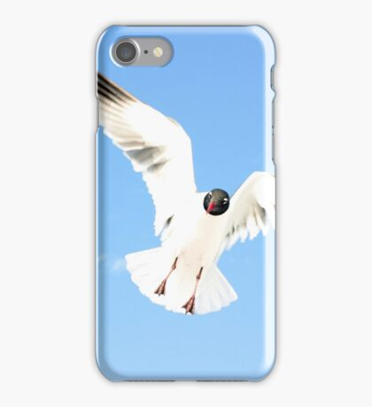 Floridian Gull iPhone Case/Skin