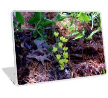 Plains Wild Indigo Laptop Skin