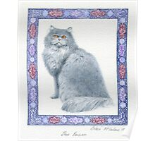 Blue Persian Poster