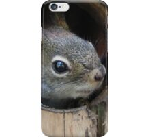 Did You Knock? iPhone Case/Skin