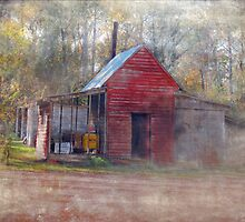 Little Country Store in the Woods by Susan Werby