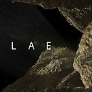 Philae in it's final resting place by Ray Cassel
