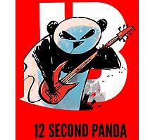 12 Second Panda Photographic Print