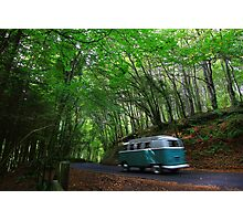 Run To The sea - Stackpole Estate Woodland Road.... Photographic Print