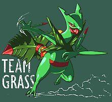 Team Grass - Mega Sceptile by SUIamena