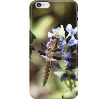 A Texas Dragon Fly iPhone Case/Skin