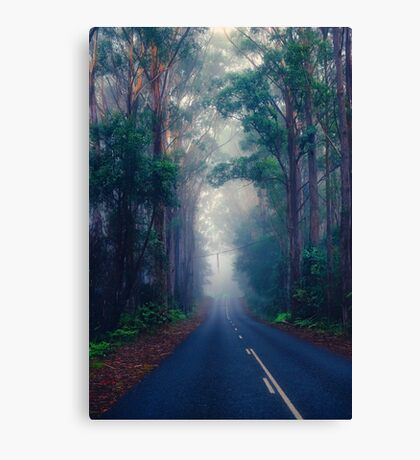The Road Home... Canvas Print