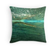 Baby Spotted Gar Throw Pillow